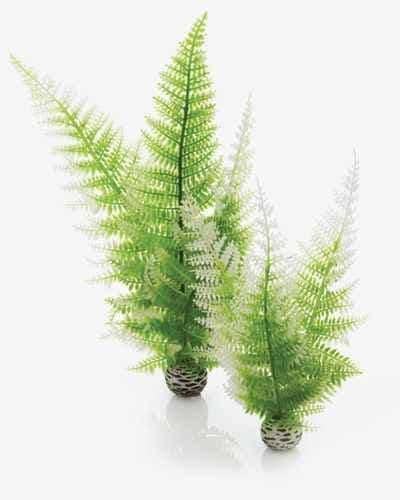 Biorb Plant Fern Winter