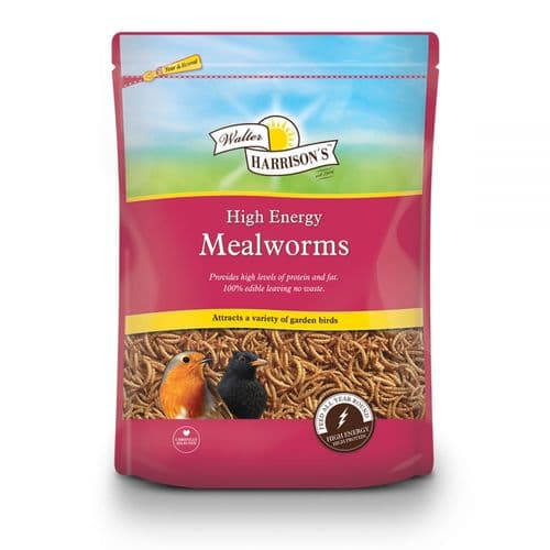 Walter Harrison's High Energy Mealworms