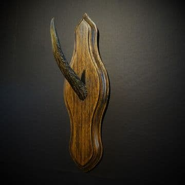 Art Deco Deer Antler Hat or Coat Hook