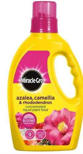 Miracle Grow Azelia, Camellia & Rhododendron Liquid Plant Food 1ltr