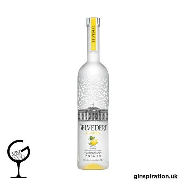 Belvedere Citrus Vodka 70cl | Ginspiration,uk