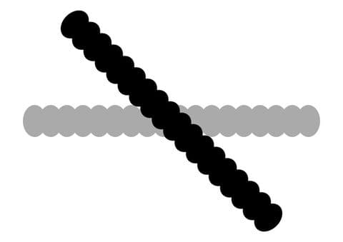 Decostrips Oval Chain