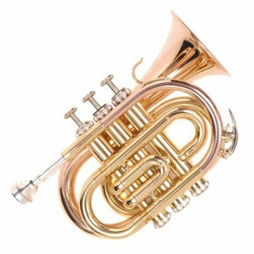 ODYSSEY PREMIERE 'BB' POCKET TRUMPET OUTFIT - OCR100P