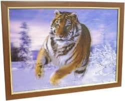 3D  Tiger picture
