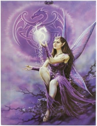 Purple Fairy & Dragons  Picture