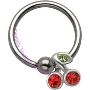 Surgical Steel  Ball Closure Rings with silver charms.