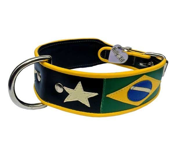 Flying down to Rio Flag of Brazil Dog Collar