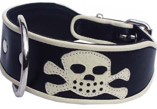 Pirate Dog Collar as seen in