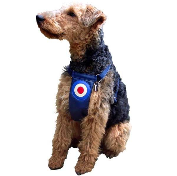 Quadrophenia Dog Harness