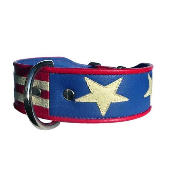 Stars and Stripes.  Flag of America Dog Collar.