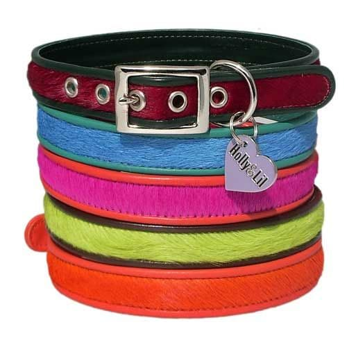 Everyday Dog Collars pink blue lime orange red -slim collars for Hounds  Holly & Lil Collars Handmade in Britain, Leather dog collars, leads & Dog harnesses.
