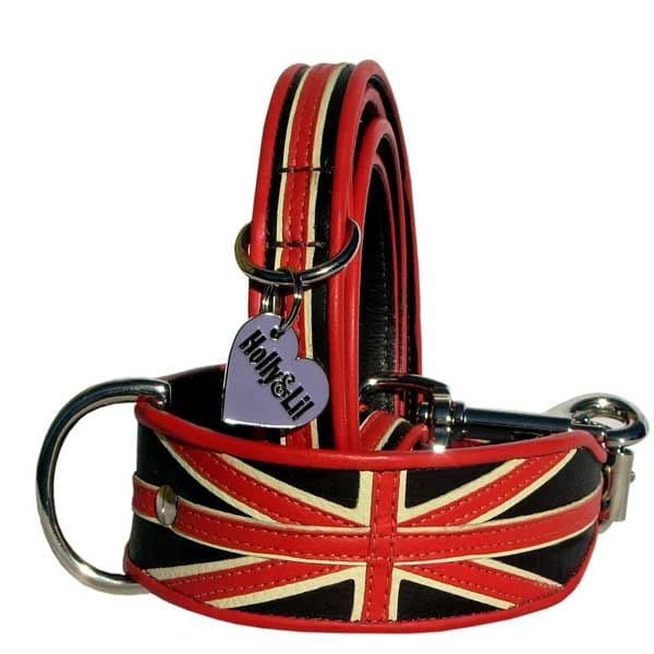 Union Orange Dog Collar Limited Edition
