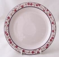 Hornsea Pottery Cranberry