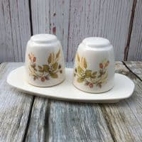 Marks and Spencer Harvest Melamine Salt & Pepper Set