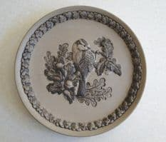 Poole Pottery Stoneware Plate, British Garden Birds, The Blue Tit