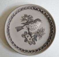 Poole Pottery Stoneware Plate, British Garden Birds, The Song Thrush