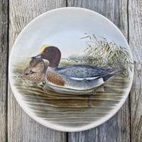 Poole Pottery Transfer Plate by John Gould - Widgeon