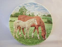Poole Pottery Transfer Plate, Pony and Foal (1)