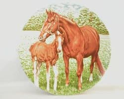 Poole Pottery Transfer Plate, Pony and Foal (2)