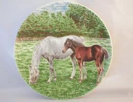 Poole Pottery Transfer Plate, Pony and Foal (4)