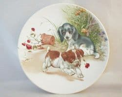 Poole Pottery Transfer Plate, Puppies Playing