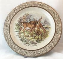 Purbeck Pottery Wildlife Decorative Plates, White Tailed Deer