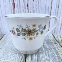 Royal Doulton Pastorale Tea Cup
