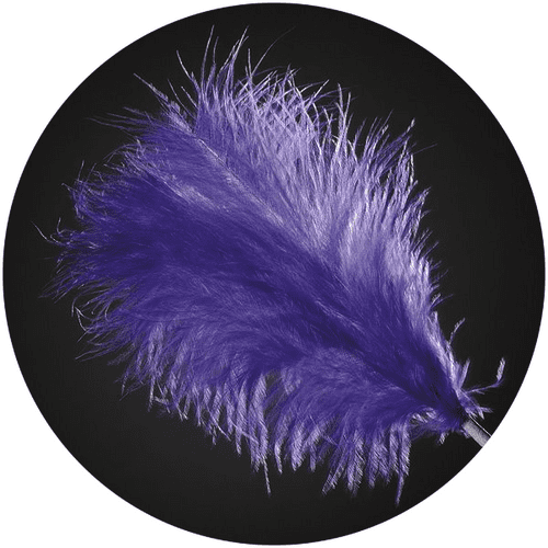 3 Feathers Spray Purple