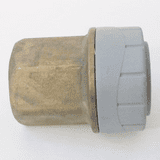 Polyplumb Push Fit 22mm x 3/4 in Female Iron Coupling - 29P02022