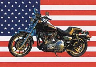 Harley on Stars and Stripes - Poster Flag