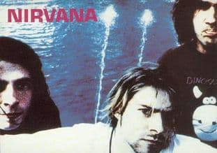 Nirvana - 'Group by Water' Postcard Sticker