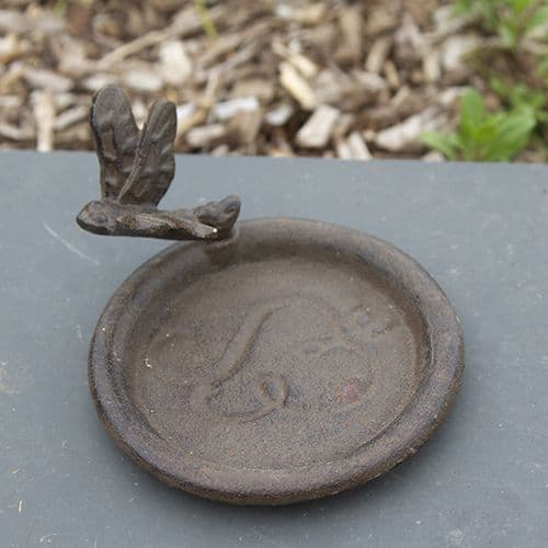 Dragonfly Plant Saucer