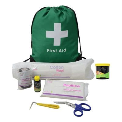 Lincoln First Aid Travel Kit