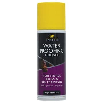 Lincoln Waterproofing Aerosol